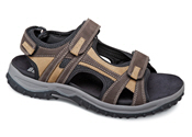 Brown/Tan Warren Sandal