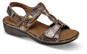 Collette Brown T-strap Sandal