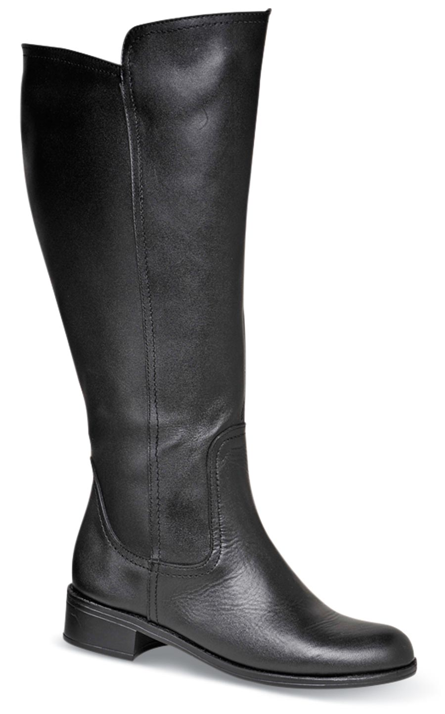 Samantha Black 15-inch Zip Boot